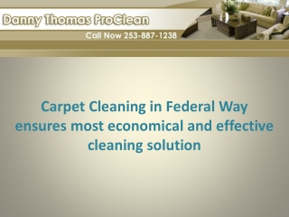 Carpet cleaning in Federal Way ensures cleaning solution