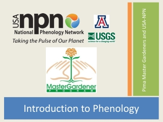 Tucson Phenology Monitoring Project