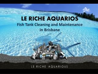 Fish Tank Cleaner | Aquarium Cleaner
