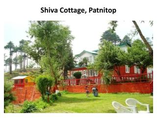 Book Shiva Cottage in patnitop