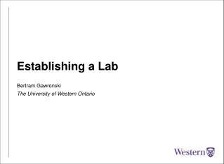 Establishing a Lab