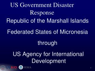 US Government Disaster Response