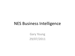 NES Business Intelligence