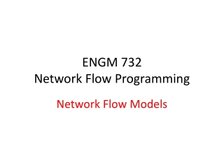 ENGM 732 Network Flow Programming