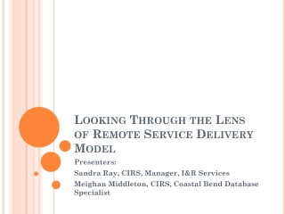 Looking Through the Lens of Remote  Service Delivery Model