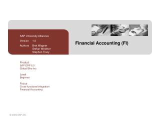 Financial Accounting (FI)
