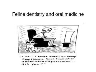 feline dentistry and oral medicine