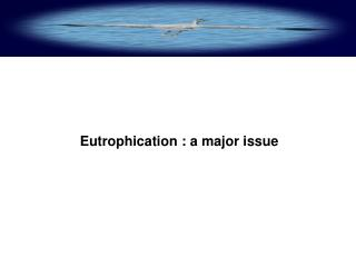 eutrophication : a major issue