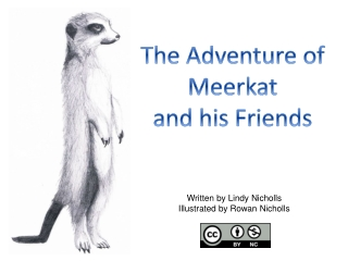 The Adventure of  Meerkat and his Friends