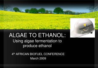 algae to ethanol: using algae fermentation to produce ethanol