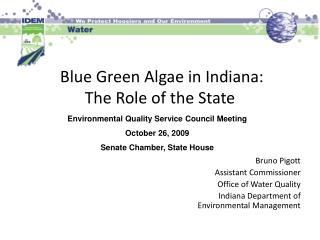 blue green algae in indiana: the role of the state