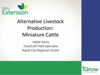 Alternative Livestock Production: Miniature Cattle