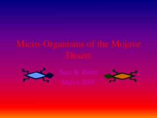 micro-organisms of the mojave desert