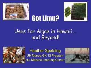 got limu  uses for algae in hawaii . and beyond