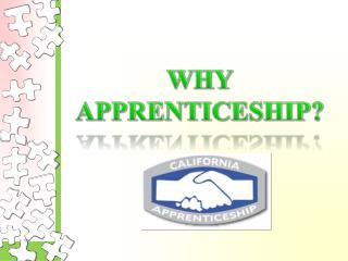WHY APPRENTICESHIP?