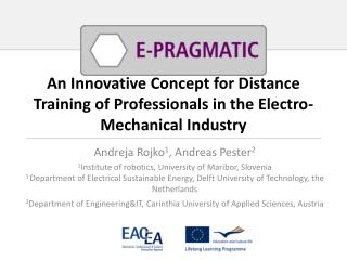 An Innovative Concept for Distance Training of Professionals in the Electro-Mechanical Industry