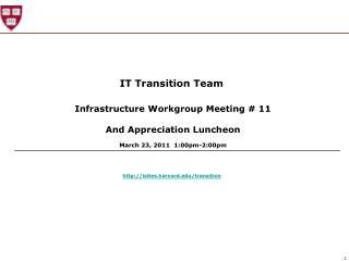 IT Transition Team