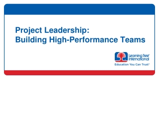 Project Leadership:  Building High-Performance Teams
