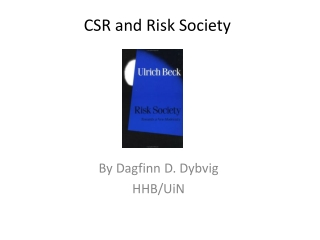 CSR and Risk Society
