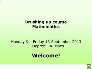 Brushing up course Mathematics