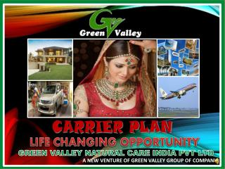GREEN VALLEY NATURAL CARE INDIA PVT LTD