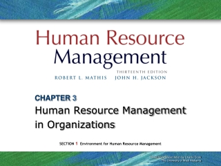 CHAPTER 3 Human Resource Management in Organizations
