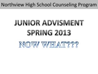 Northview High School Counseling Program