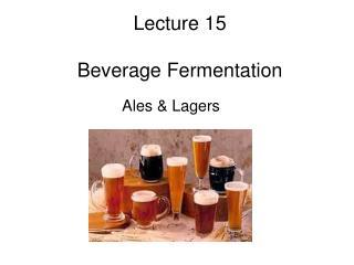 lecture 15  beverage fermentation