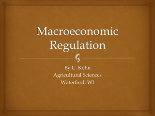 Macroeconomic Regulation