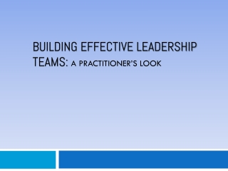 Building Effective  Leadership  Teams:  A Practitioner's Look
