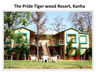 Book The Pride Tiger wood Resort in kanha