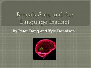 Broca's  Area and the Language Instinct