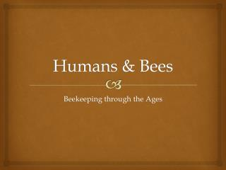 Humans & Bees
