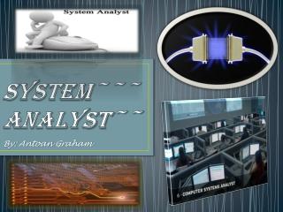 System~~~Analyst~~