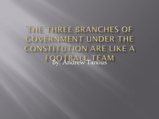 The three branches of government under the constitution are like a football team