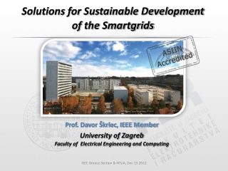 Solutions for Sustainable Development of the Smartgrids