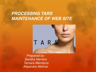 PROCESSING TARS MAINTENANCE OF WEB SITE