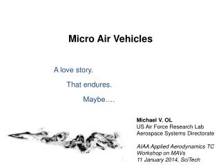 Micro Air Vehicles