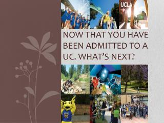 Now that you have been admitted to a  uc . What's next?
