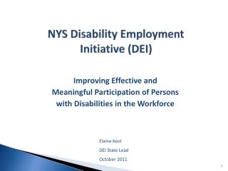 NYS Disability Employment  Initiative (DEI)