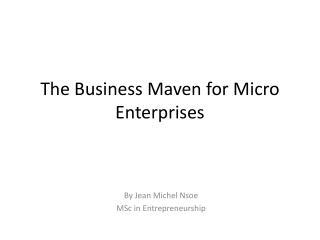 The Business Maven for Micro Enterprises