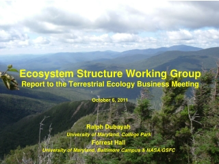 Ecosystem Structure Working  Group Report to the Terrestrial Ecology Business Meeting October 6, 2011