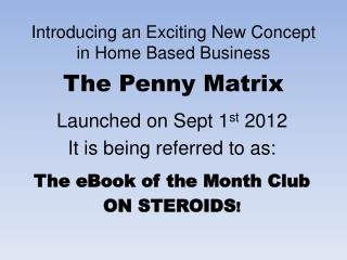 Introducing an Exciting New Concept in Home Based Business The Penny Matrix