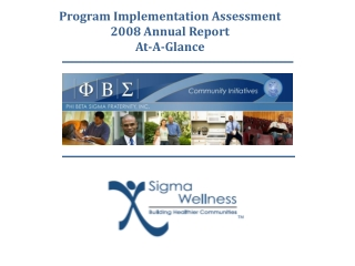 Program Implementation Assessment 2008 Annual Report  At-A-Glance