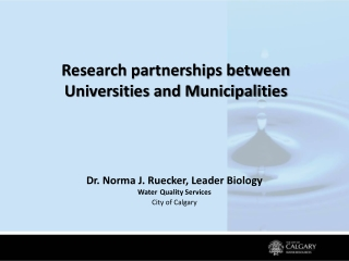 Research partnerships between Universities and Municipalities