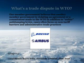 What's a trade dispute in WTO?
