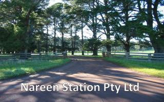 Nareen  Station Pty Ltd