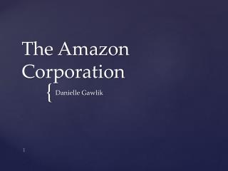 The Amazon Corporation
