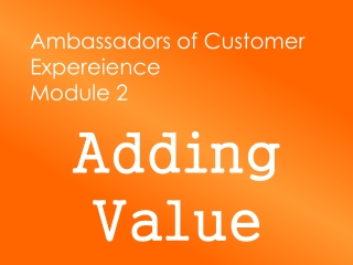 Ambassadors of Customer  Expereience Module 2