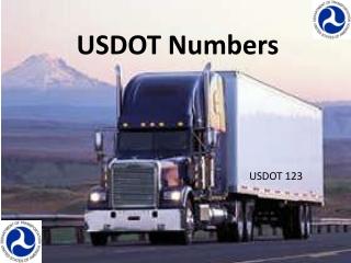 USDOT Numbers